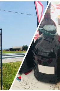 ★イタリアで夏休み2018★ ④オーガニックワイン